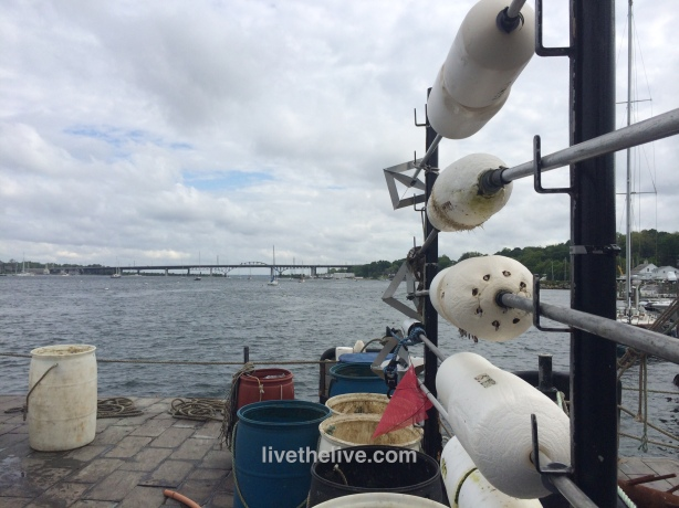 A view of the Sakonnet River from the back of Gary's lobster boat, the Edna Mae
